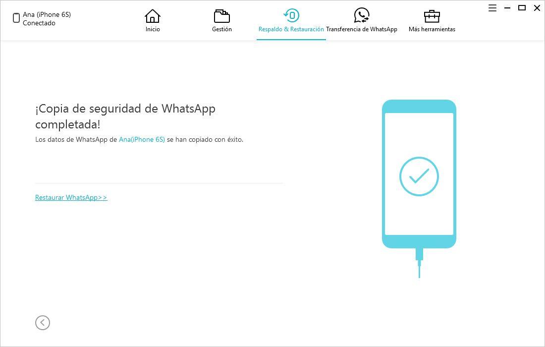 respaldo whatsapp completado